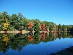 Beautiful Foliage at Pulaski Park in RI